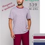 Pánské pyžamo 539