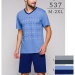 Pánské pyžamo Regina 537 kr/r M-XL