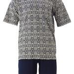 Pánské pyžamo KR/KN Tasil – Favab